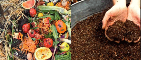 COMPOSTING AND IT'S TYPE
