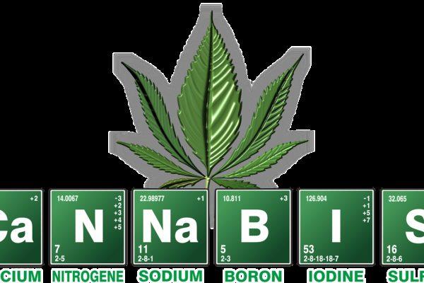 cannabis, weed, breaking bad
