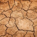 Soil: Definition and Names of Various Types of Soil